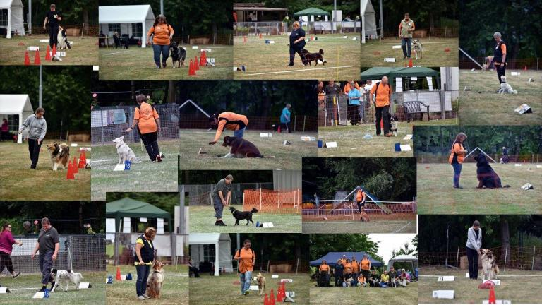 Impressionen Rally Obedience Tag